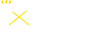 IDN HOLDINGS